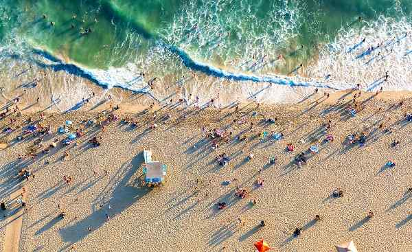 Aerial view of the beach in Santa Monica  CA 525832879