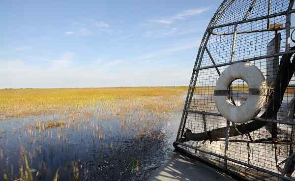 BUS-NY-FL Florida airboat Everglades 43315165
