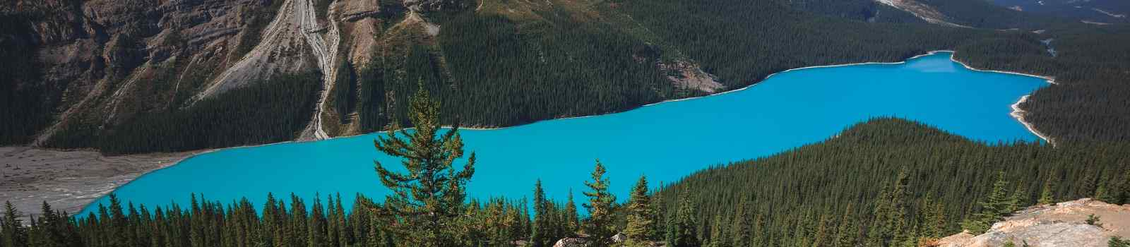 CAD-MT-COUNTRY Peyto Lake in Banff Canada shutterstock 538033426