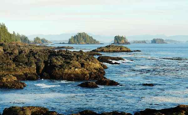 CAD-RM-CPC_Kanada_Vancouver Island_Rocky seashore in the pacific rim national park.jpg