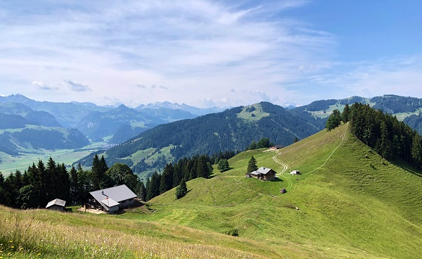 CH-WAN-JURA Alpine pastures and grasslands in the valley of Sihltal and by the artifical Lake Sihlsee  Einsiedeln - Canton of Schwyz  Switzerland shutterstock 1462193405