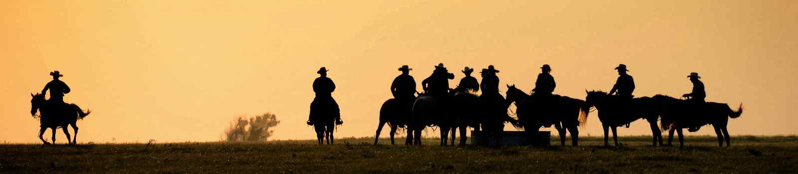GOOSEWING-RANCH -Silouette of Cowboys