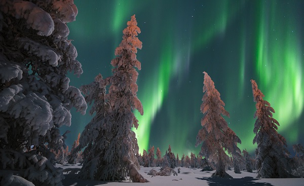 KL-CAD-KR-NL Winter scene Northern Lights Aurora shutterstock 528575095