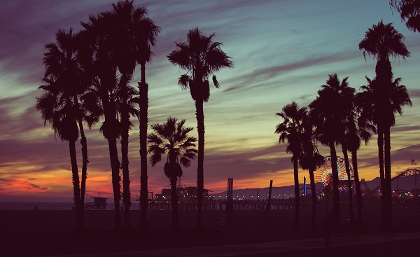 MOTORRAD-BA-CALI Sunset colors with palms silhouettes in Santa monica  Los angeles  concept about travels 327531674
