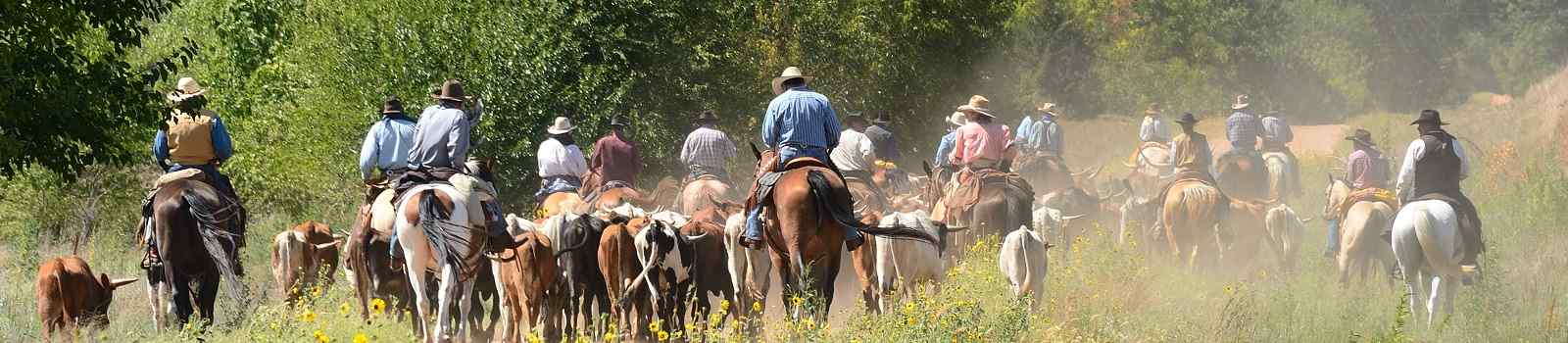 SILVER-SPUR -Kansas Cattle Drive on Dusty Kansas Road 98099291