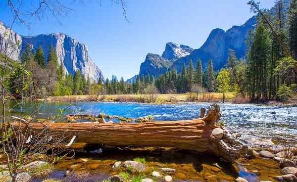 YOSEMITE-NATIONALPARK USA NP Yosemite River el Capitan and Half Dome 163476170